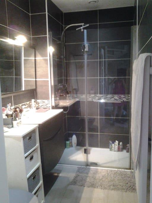 Salle de douche : grande douche italienne, lavabo et toilettes.
