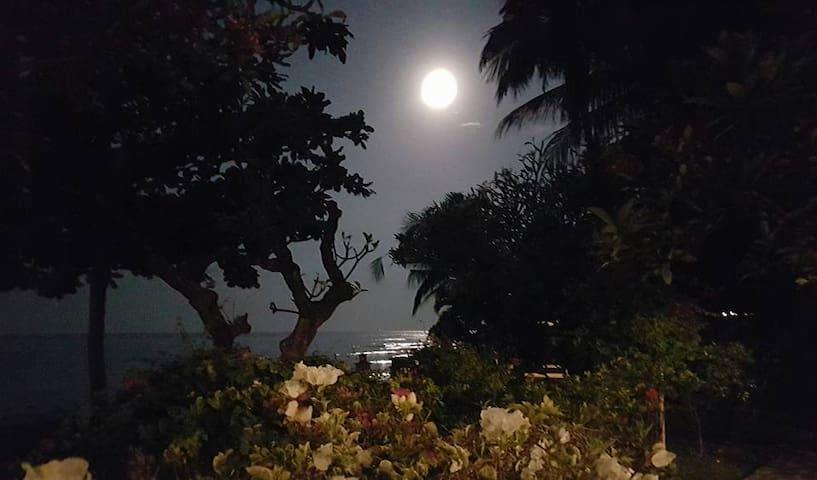 The Ning Beachfront Villa, Kubutambahan, Bali - Kubutambahan - Casa de camp
