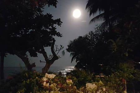 The Ning Beachfront Villa, Kubutambahan, Bali - Kubutambahan - Βίλα