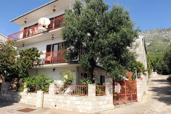 Three bedroom apartment with terrace and sea view Podaca, Makarska (A-315-a)