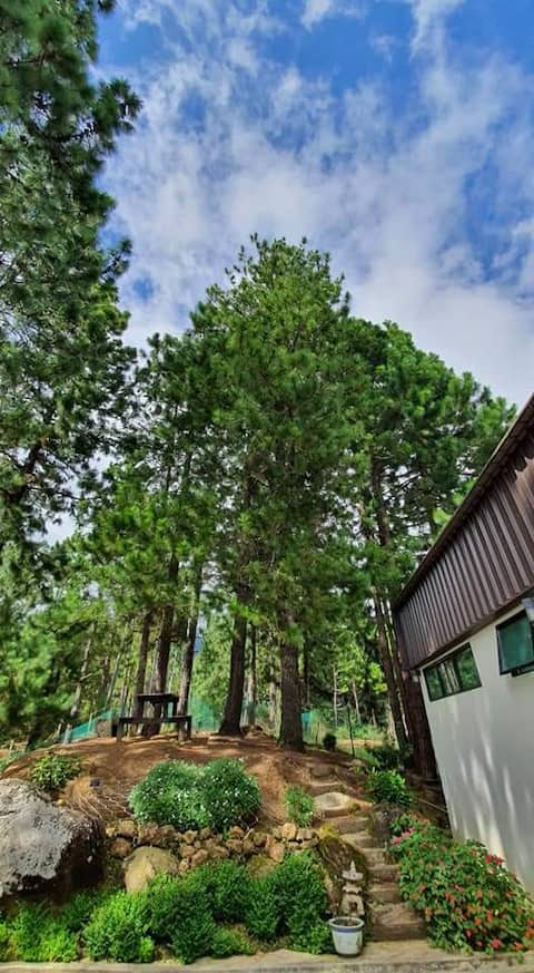 One of a kind family house with large timber deck