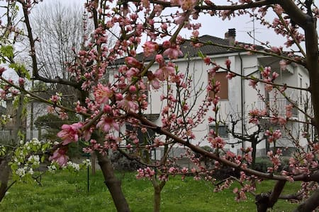 Cozy house with orchard and garden - Pizzale - Vila