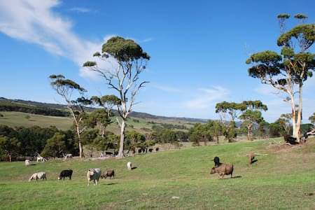 Lisieux Farm on the Fleurieu - Back Valley