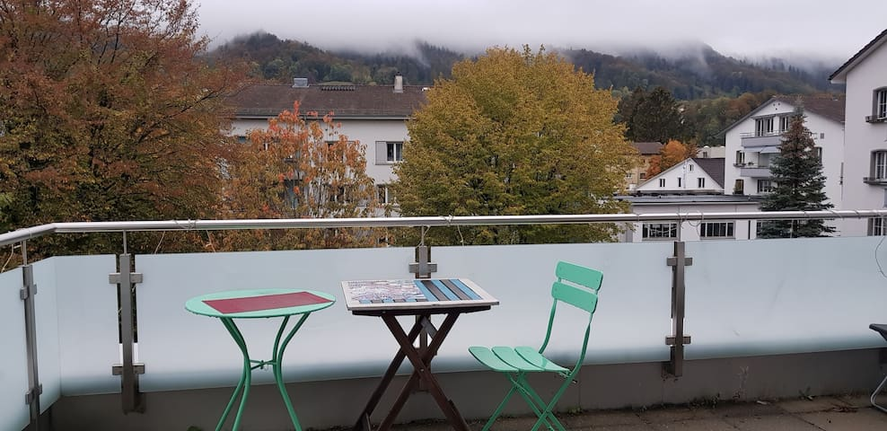 Room in bright and spacious apartment in Adliswil
