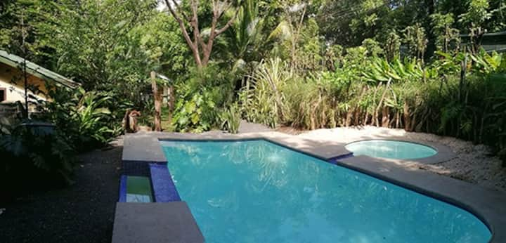 Lovely house near Montezuma in a natural garden