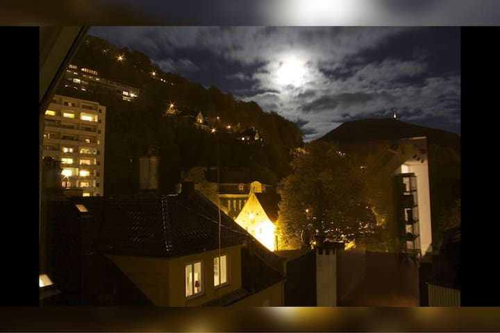 Penthouse apartment in the city centre of Bergen - Bergen - Wohnung