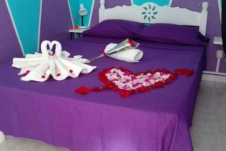 Camera Matrimoniale Basic - Appartement