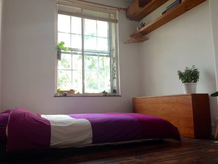 Greater London sunny double room
