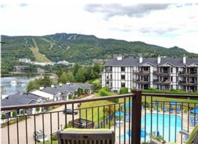 Cozy Pinoteau Condo, fireplace,  2 bed, 1 sofa bed