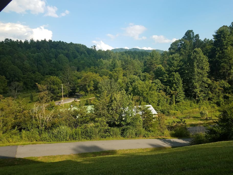 Property view during the summer