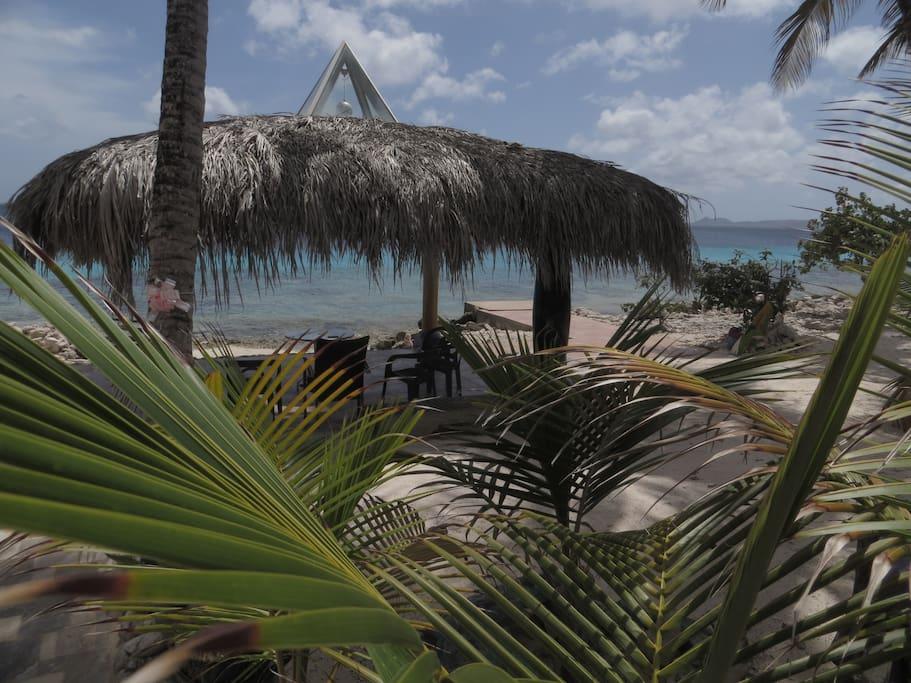 Direct aan zee, een gazebo geeft, indien gewenst, schaduw. Volwassen palmen op het strand.