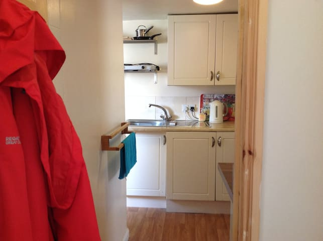 Bedsit with 1 single bed - Londres - Apartamento