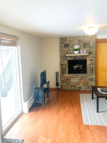 Downtown Aspen 2 Bedroom Condo -  Pet Friendly
