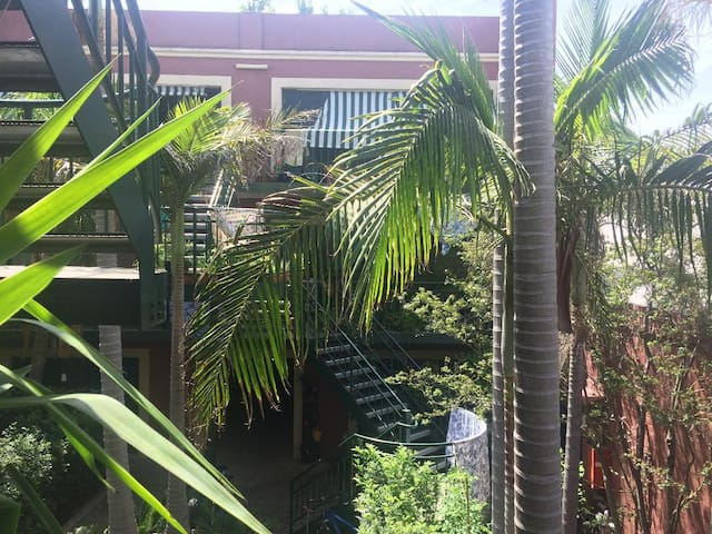Oasis in the CBD.