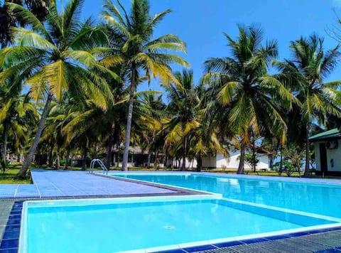 Pearl Oceanic Resort - Trincomalee-Twin Room
