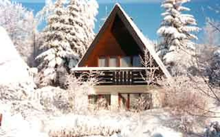 Black Forest holiday houses type (B)