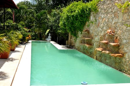 Tropical Home with 45ft Lap Pool and Large Garden - Merida - Maison