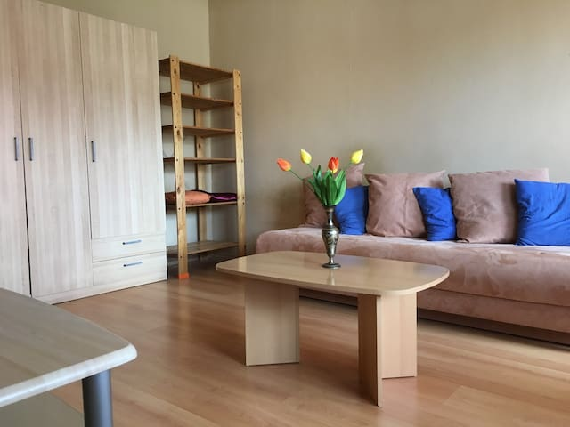Sunny and spacious, fully equipped 1 bedroom flat!