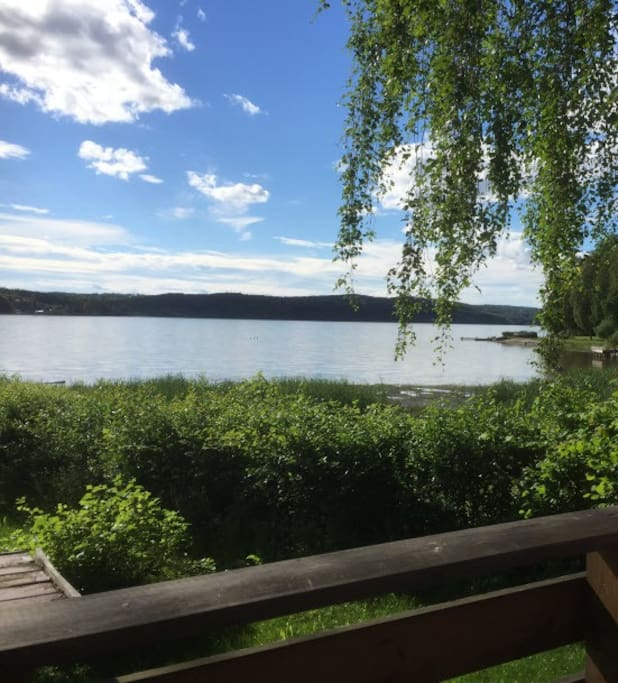 Øyeren is the 9th biggest lake in Norway and the lake in Norway with most different fish species
