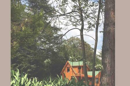 Hermosa Cabaña canadiense - CdMx /Toluca