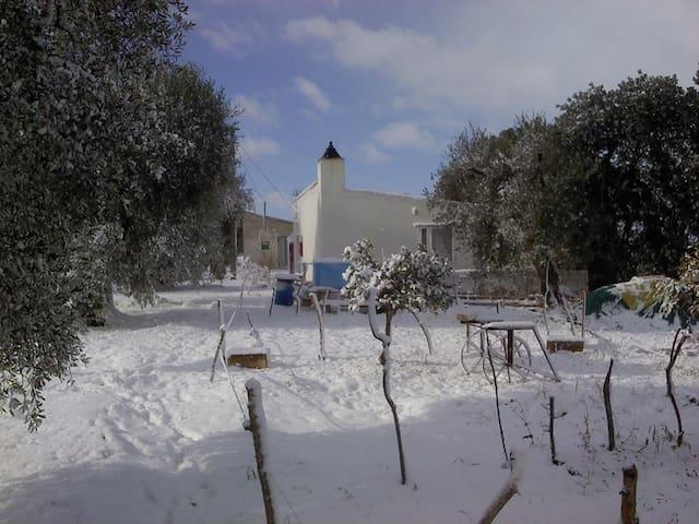 Casa Esmeralda - Pisticci - Casa
