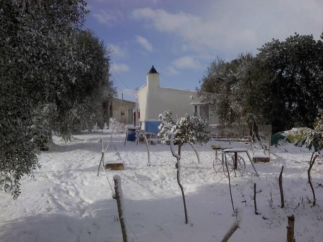 Casa Esmeralda - Pisticci - House