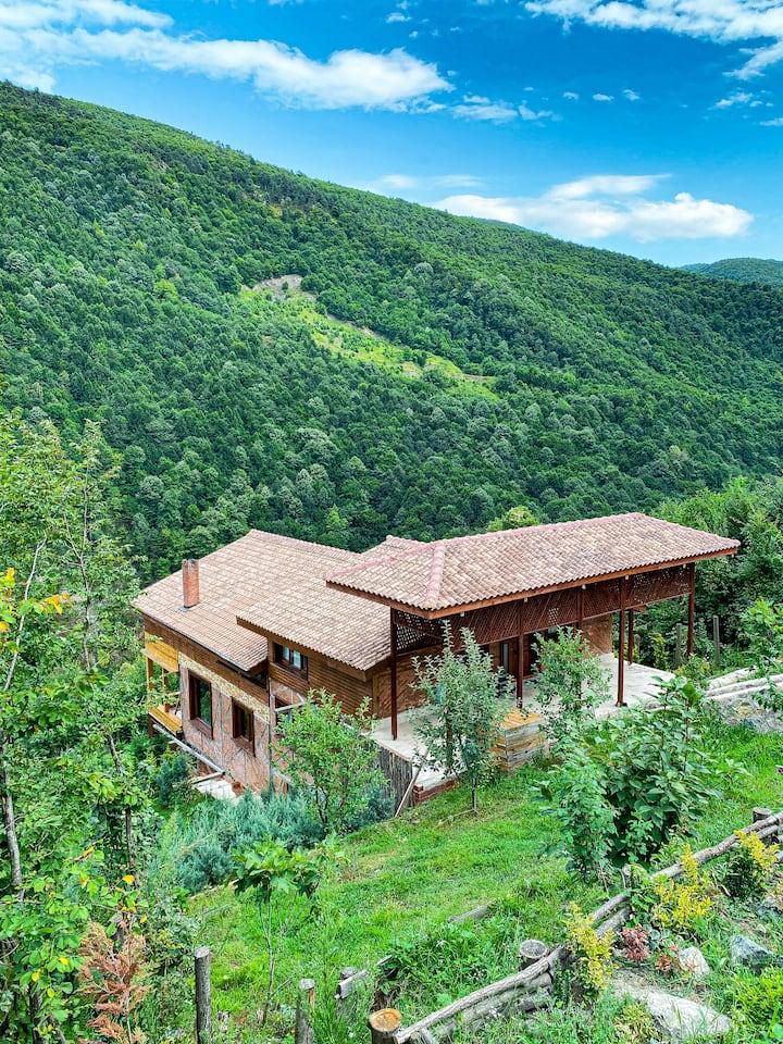 sapanca bölgesinde vadi manzaralı 15 kişilik villa