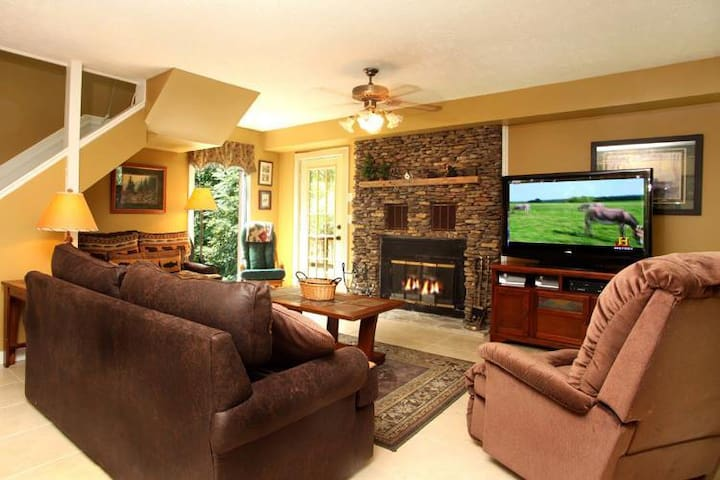 Main level Living with fireplace