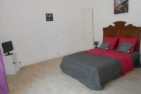 CHARMANTE MAISON CARACTERE PRES ZOO 1/9 PERSONNES - Saint-Aignan - 連棟房屋