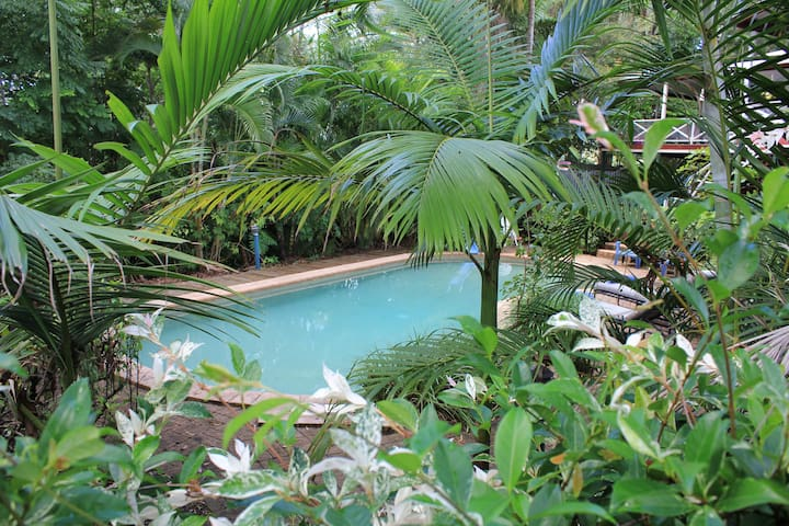 Spot Koalas by the Pool at this Lush Hideaway!