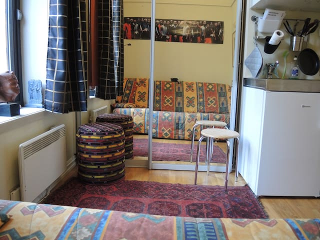 Studio apartment - Oslo - Lägenhet
