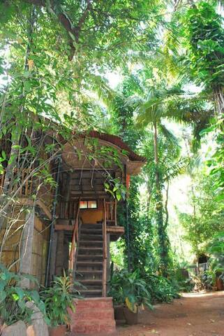 Bamboo cottage near the Canacona