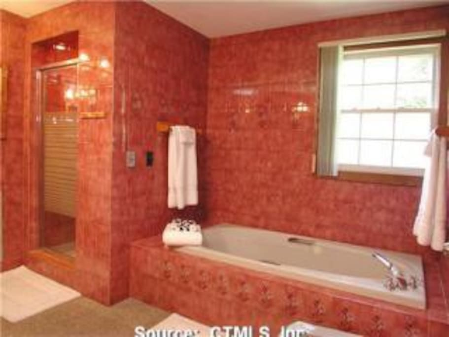 Marbled bathroom, with bidet.  Upstairs, if needed / desired.