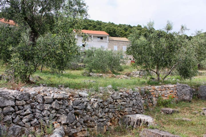 Studio flat with balcony and sea view Ropa, Mljet (AS-4944-d)