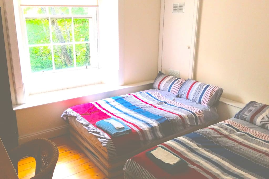 Available Double Bedroom - Has 2 double beds. They look small in the picture, but they are both double beds.