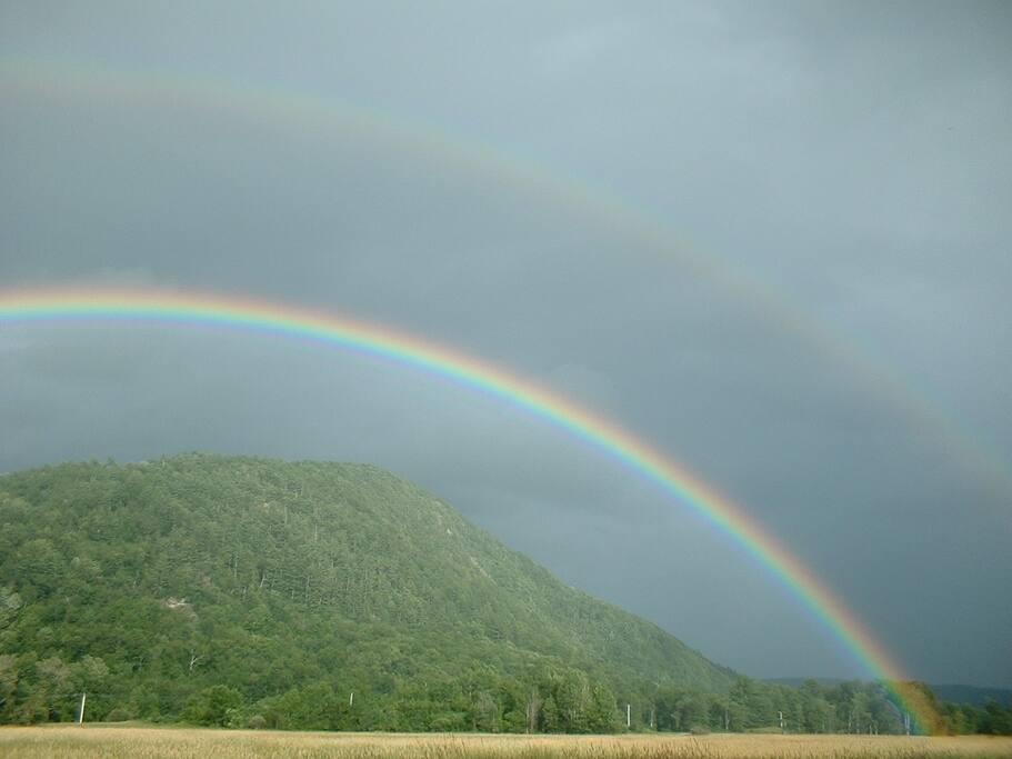 Double Rainbow in backyard