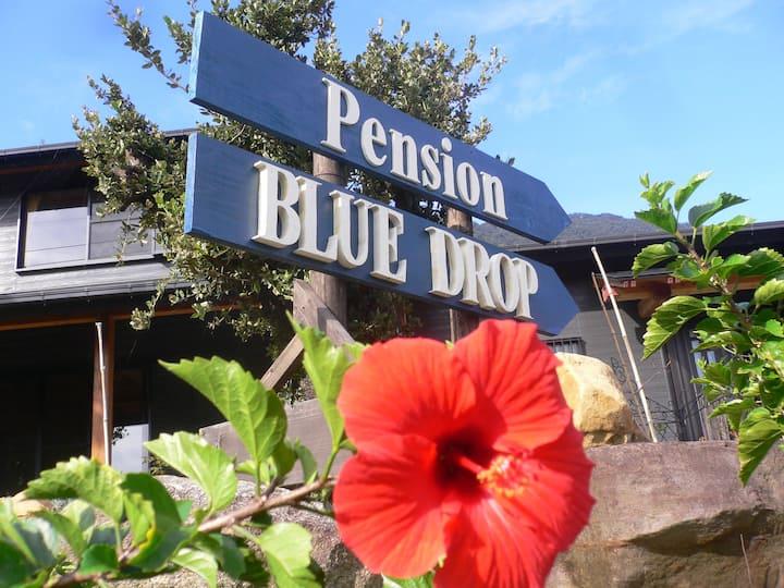 Pension BLUE DROP, cozy twin room