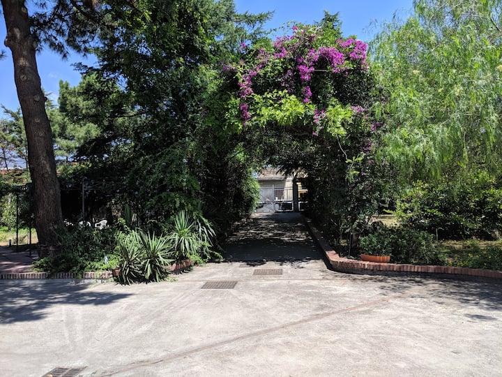 Villa Belvedere - alloggio Sorrento