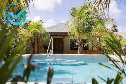 LittleJungle apt#3 studio 1 mil to Palm/Eaglebeach