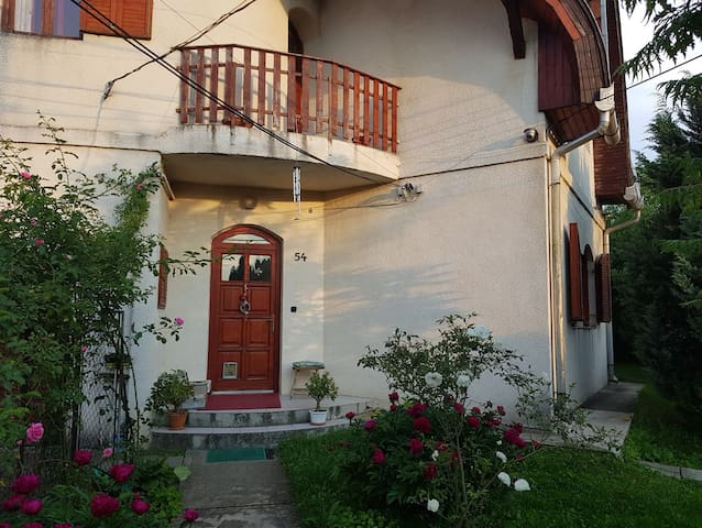 nice 3 bedrooms apartment with garden near Bp.