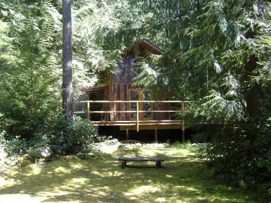 Mossy meadow in front of the cabin, ideal for meditating.