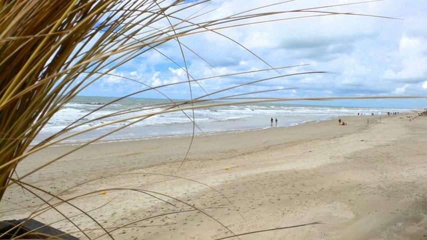 "Studio ""Windkracht Sien"", 400m vom Meer entfernt!"