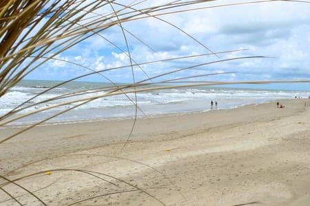 """Studio """"Windkracht Sien"""", 400m van strand! - Callantsoog - Kondominium"""