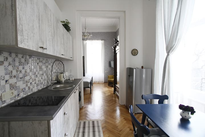 Princely Family House At Rustaveli Avenue - Tbilisi - Appartement