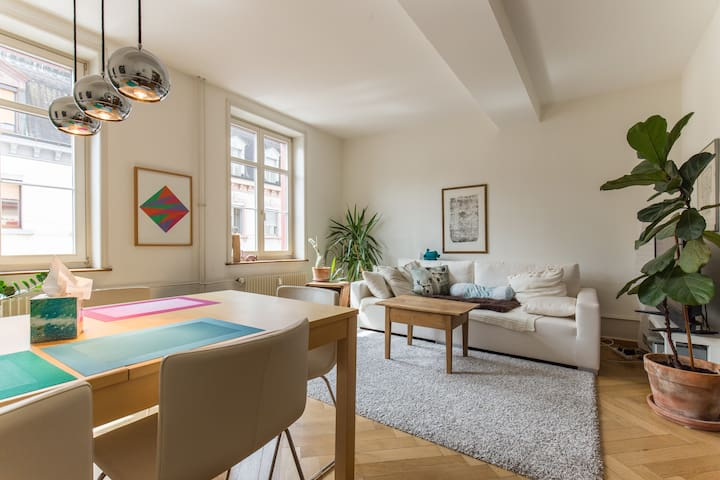 Cosy & large in the heart of Basel - Basel - Huoneisto