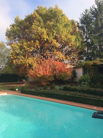 Studio indépendant dans un beau jardin au calme - La Tour-de-Salvagny - Chalet