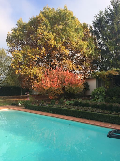 Le pool-house donnant sur la piscine