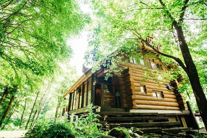Sunnsnow  log house/ Hakuba Norikura with car