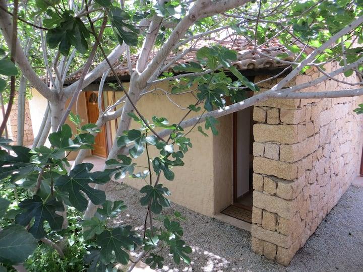Maisonnette 34 m2 Corse du Sud