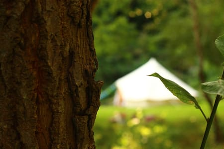 Bailey's Bell Tent - Tent